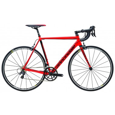 http://cycleshop-fun.com/images/C16_C13246M_RED.jpg